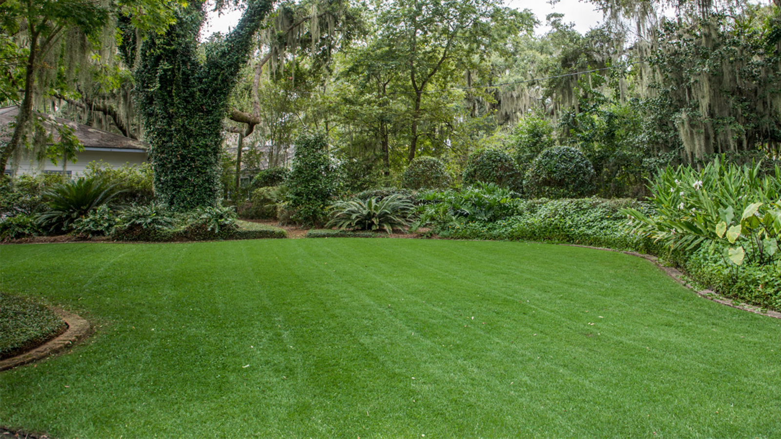 Lawn Maintenance Services in South Carolina 4