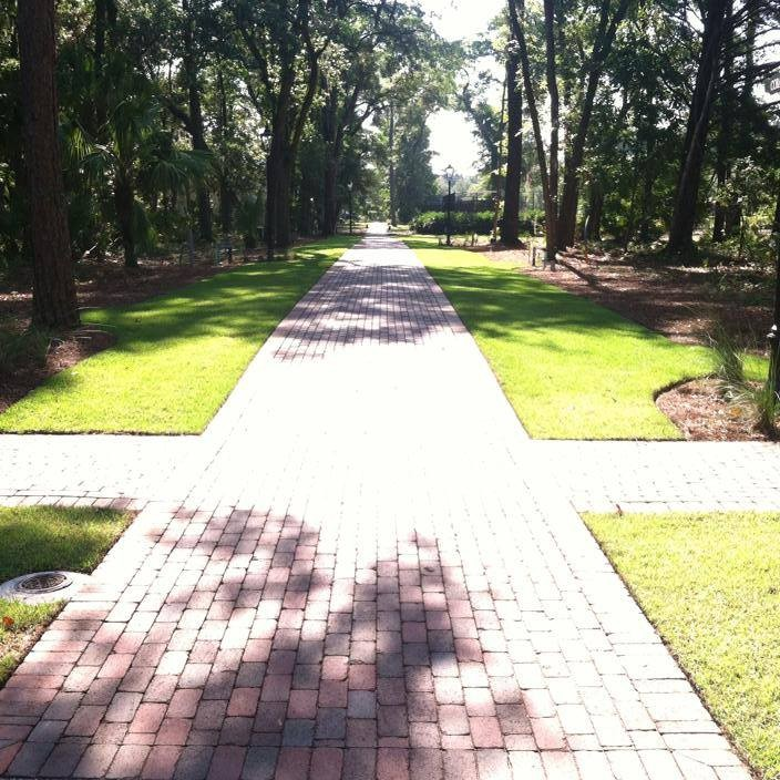 Landscape Lawn Maintenance Beaufort2